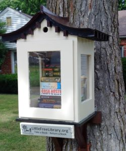 Sadie's Little Free Library
