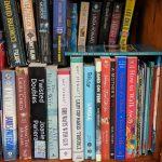 June 19, 2019 little free library shelfie